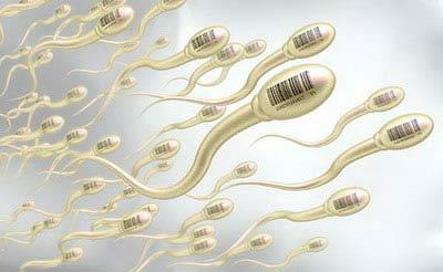"""男性健康标准病毒蝌蚪:你的小精子""""合格""""?质量性能多久感染皮肤病好一般图片"""